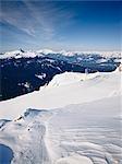Ski Trail, Whistler Mountain, Whistler, British Columbia, Canada