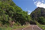 Road through Desfiladero de los Beyos, Asturias, Spain