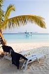 Beach Scene in Meedhupparu Island, North Maalhosmadulu Atoll, Maldives