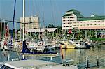 Port de plaisance, Cairns, Queensland, Australie