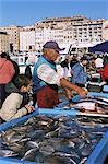 Fish market, Vieux Port, Marseille, Bouches du Rhone, Provence, France, Europe