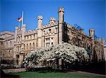 Bâtiments de la vieille école de Kings College, Cambridge, Cambridgeshire, Angleterre, Royaume-Uni, Europe