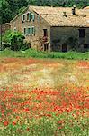 Ferme près de Gordes, Vaucluse, Provence, France, Europe