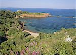 Esterel Corniche près de St. Raphael, Cote d'Azur, Méditerranée, Provence, France, Europe