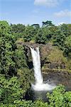 Rainbow Falls près de Hilo, île d'Hawaii (Big Island), Hawaii, États-Unis d'Amérique, Amérique du Nord