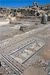 House of Orpheus, Roman site of Volubilis, UNESCO World Heritage Site, Morocco, North Africa, Africa