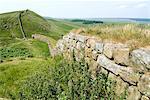 Hadrian's Wall, near Housesteads, UNESCO World Heritage Site, Northumberland, England, United Kingdom, Europe
