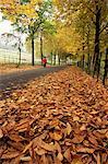 Feuilles d'automne et la figure solitaire au plus Hall Reservoir, South Yorkshire, Angleterre, Royaume-Uni, Europe