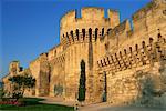 Vue extérieure des remparts (les remparts), ville murs, Avignon, Vaucluse, Provence, France, Europe