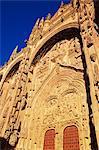 Puerta del Nacimiento (porte Renaissance) de la Catedral Nueva (nouvelle cathédrale), Salamanque, Castilla y Leon (Vieille-Castille), Espagne, Europe