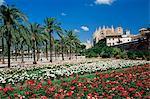 Palma cathedral and gardens of Parc de la Mar square, Palma de Mallorca, Majorca, Balearic Islands, Spain, Mediterranean, Europe