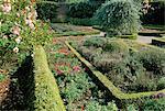 Benvarden garden, Ballymoney/Dervock, County Antrim, Northern Ireland, United Kingdom, Europe