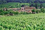 Cotes de Toul vineyards, village of Lucey, Meurthe-et-Moselle, Lorraine, France, Europe