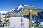 Palliser Range,Banff,Alberta,Canada