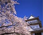 Odawara Castle Grounds,Kanagawa,Japan