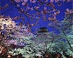 Turugajo Castle Park,Fukushima,Japan