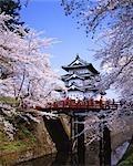 Hirosaki-Koen,Aomori,Japan