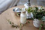 High angle view medicinal herbs on table
