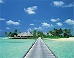 Ocean Scene, Maldives