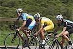 Cyclistes de course sur route