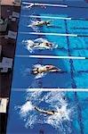 Natation (nage sur le dos)