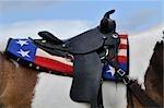 Close-up of Saddle on a Horse