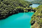 Lacs turquoise, Parc National des lacs de Plitvice, Site du patrimoine mondial de l'UNESCO, en Croatie, Europe
