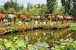 Beijing Botanical Gardens, Beijing, Chine, Asie