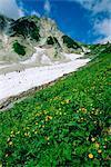 Randonneurs en route vers le Mont Glacier de Hakuba, Alpes du Nord, Japon