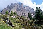 Range-Langkofel, 3181m, Val Gardena, Dolomiten, Südtirol, Italien, Europa