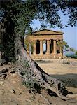 Le Concordia temple, Agrigento, Sicile, Italie, Europe