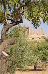 Oliviers et d'amandiers et du Temple de Junon, la vallée des Temples, Agrigente, UNESCO World Heritage Site, Sicile, Italie, Europe