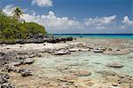 Bird Island, Tikehau, Tuamotu Archipelago, French Polynesia, Pacific Islands, Pacific