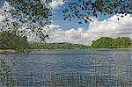 L'eau Esthwaite, pays de Beatrix Potter, Parc National de Lake District, Cumbria, Angleterre, Royaume-Uni, Europe