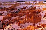 Cheminées de fée, amphithéâtre de Bryce, Parc National de Bryce Canyon, Utah, États-Unis d'Amérique (États-Unis d'Amérique), Amérique du Nord