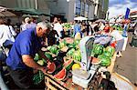 Fruits et légumes stands au marché Central, Riga, Lettonie, pays baltes, Europe