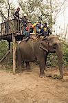 Japanese tourists board the elephant that will take them on safari, at the Island Jungle Resort hotel, Royal Chitwan National Park, Terai, Nepal, Asia