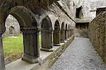 Cloître, Ross Errilly Franciscan Friary, près de Headford, comté de Galway, Connacht, Irlande, Europe