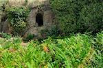 Tombe étrusque, la nécropole étrusque de San Potente, Tuscania, Viterbo, Latium, Latium, Italie, Europe