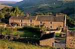 Bauernhof in der Nähe von Gunnister, Swaledale, Yorkshire Dales National Park, Yorkshire, England, Vereinigtes Königreich, Europa