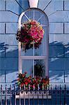 Fenster eines Hotels in Cobh (Cork), County Cork, Munster, Irland, Europa