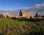 Athassel Prieuré, fondé en 1192, brûlé en 1447, autrefois le plus grand monastère en Irlande, près de Cashel, Munster, comté de Tipperary, Irlande, Europe