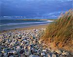 Plage, près de Doogort, l'île d'Achill, comté Mayo, Connacht, République d'Irlande (Eire), Europe