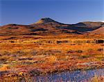 Macleod's Table (Healabhal Bheag), 489 m, Duirinish, Isle of Skye, Inner Hebrides, Scotland, United Kingdom, Europe