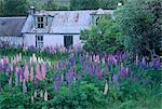 Loch Meadie, Sutherland, Hochlandregion, Schottland, Vereinigtes Königreich, Europa