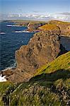Cliffs near Kilkee, Loop Head, County Clare, Munster, Republic of Ireland, Europe