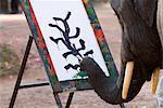 Elephant peinture, Chiang Mai (Thaïlande), l'Asie du sud-est, Asie