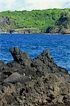 Jagged rive de lave noire sur la péninsule de Keanae, route de la côte de Hana, Maui, Hawaii, Hawaii, États-Unis d'Amérique, Pacifique, Amérique du Nord