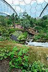 In den feuchten Tropen BioM im Eden Project eröffnete im Jahr 2001 bei einer China-Clay-Grube in der Nähe von St. Austell, Cornwall, England, Vereinigtes Königreich, Europa
