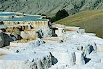 Terrasses de calcaire forment par l'eau volcanique, du dépôt de six pouces de carbonate de calcium par an, Mammoth Hot Springs et terrasses, Parc National de Yellowstone, patrimoine mondial de l'UNESCO, Wyoming, États-Unis d'Amérique, Amérique du Nord